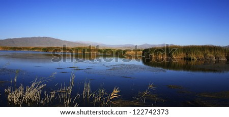 reed lake view in North West China