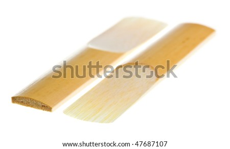 Reeds for clarinet isolated on a white background - stock photo