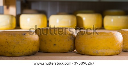 Refining cheese on wooden shelves
