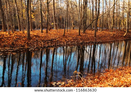 Reflection of a tree in a river by a nice and colorful autumn day - stock photo
