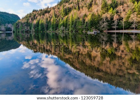 Reflection of forest in Alice lake British Columbia - stock photo