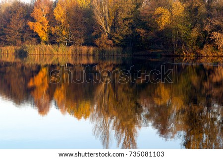 Reflection of the autumn forest in the river water