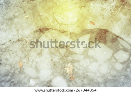 Reflection of the sunlight in the puddle with ice and leaves in the winter forest. - stock photo
