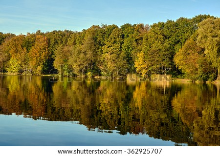 Reflection of trees in lake water during autumn in Poland