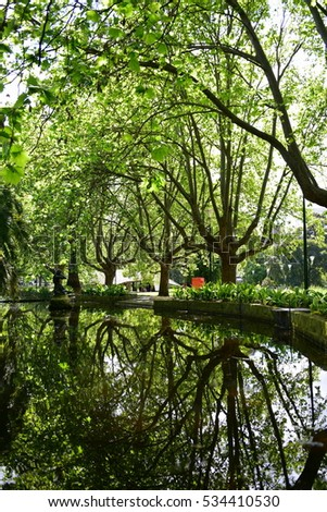 Reflection of trees in Queen Victoria Gardens in Melbourne, Australia