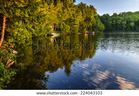 reflections in lake