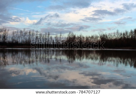 Reflections in the water