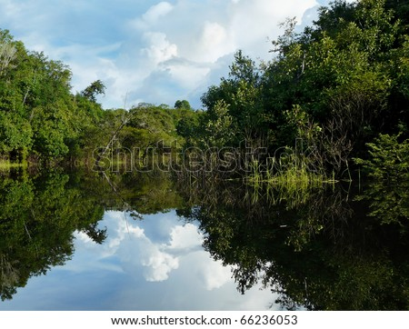 Reflections of Amazon river, Brazil - stock photo