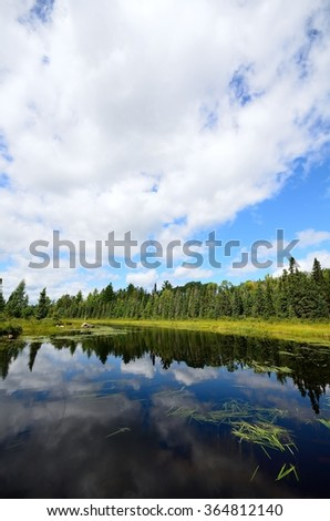 Reflections of Clouds on a Wilderness River - stock photo