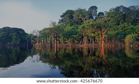 Reflections of trees in the river at rain forest in Amazonas, Brazil - stock photo