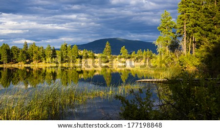 Reflections on Forested Mountain Lake