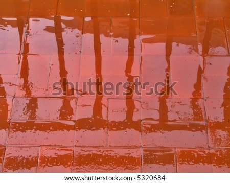 Reflections on wet pavement in the rain
