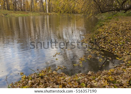 Reflective River In Autumn