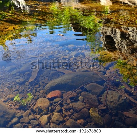Reflexes in a puddle of natural water  - stock photo