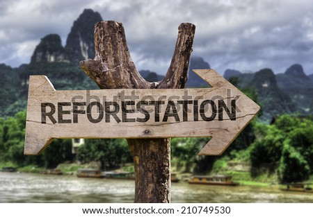 Reforestation wooden sign with a forest background  - stock photo