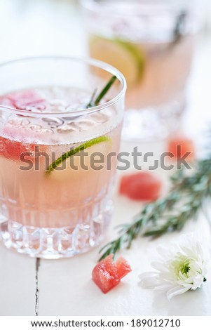 Refreshing cool cocktail mocktail drink decorated with lime slices,watermelon and rosemary - stock photo