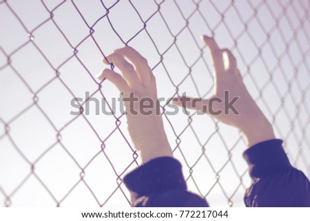 Refugee hands on fence