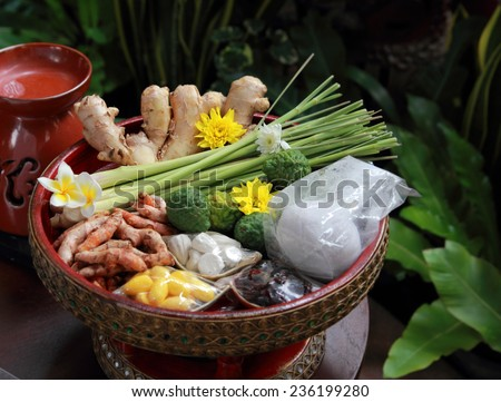 relax spa therapy ingredients - stock photo
