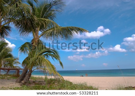 Relaxation on the beach under palm trees