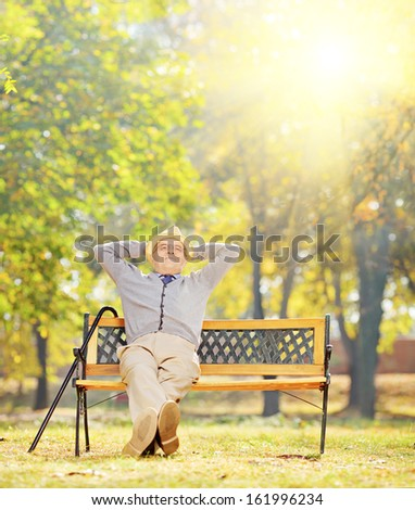 Relaxed senior gentleman sitting on a wooden bench in a park on a sunny day, shot with a tilt and shift lens - stock photo