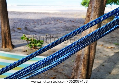 Relaxing hammock on the beach