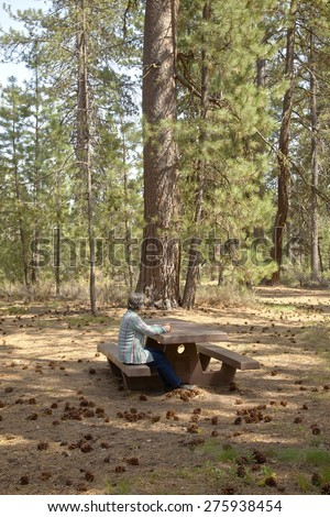 Relaxing in a forest park in central Oregon. - stock photo