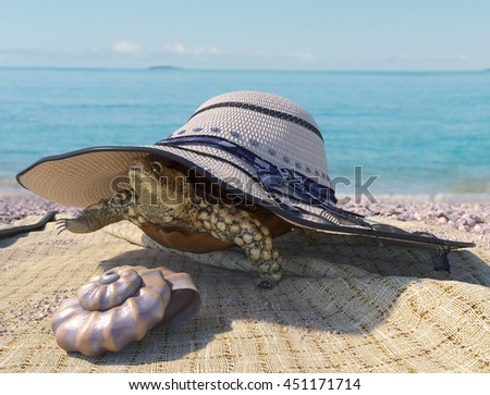 relaxing vacation concept background with seashell, turtle and beach accessories - stock photo