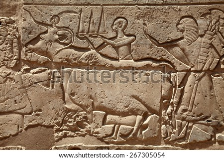 Relief figures in Egyptian temple in Luxor - stock photo