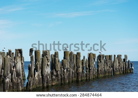 Remains of old pier, gulf of Riga, Baltic sea. - stock photo