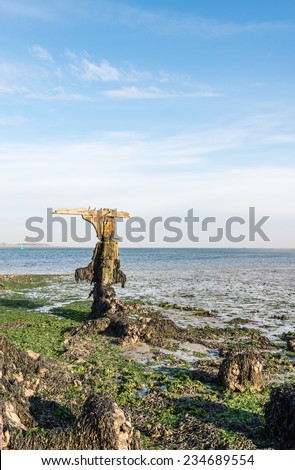 Remnants of an old ship wreck on a Dutch coast at low tide. - stock photo