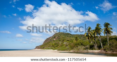 Remote Beach With Palm Trees