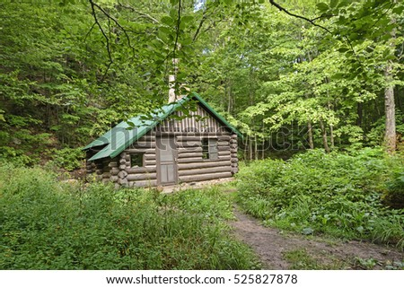 Remote Cabin in the Forest in Porcupine Mountains State Park in Michigan