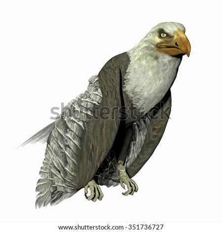 Rendered illustration of an eagle isolated on white
