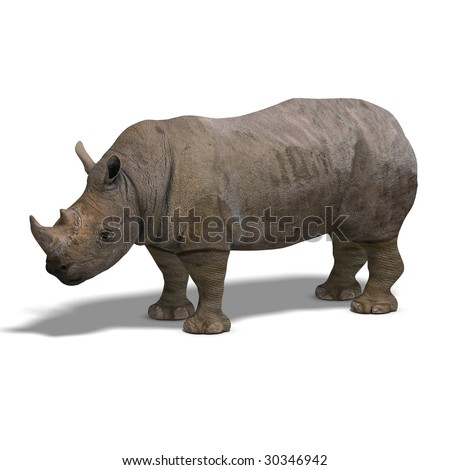 Rendering of a Rhinoceros with clipping path over white