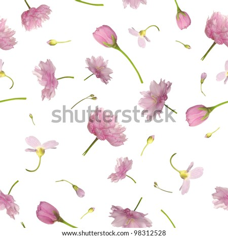 Repeatable background of pink flowers, isolated on white - stock photo