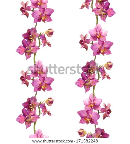 Repeated floral border lines with orchid flowers - stock photo