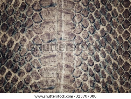 Reptile skin,snake skin background,Snake skin pattern background- vintage filter. - stock photo