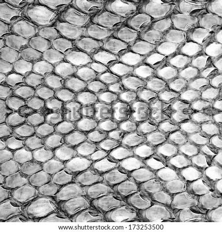 Reptile skin,  white black leather background   - stock photo