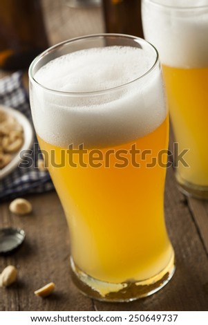 Resfreshing Golden Lager Beer in a Pint Glass
