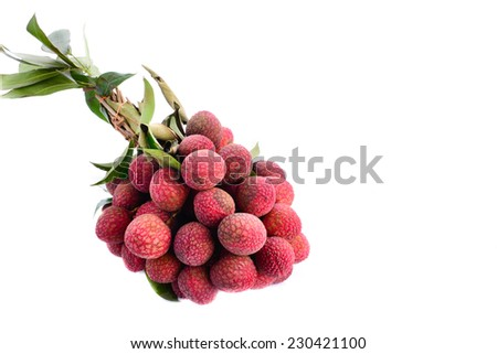 resh of litchi fruit and copy space isolated on white background - stock photo
