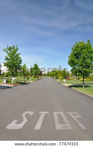 Residential Suburban Neighborhood in Spring Traffic Street Sign Stop - stock photo
