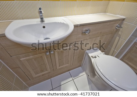 rest room detail with white ceramic hand wash basin and toilet