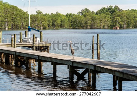 Chickahominy stock photos royalty free images vectors for Fishing in williamsburg va