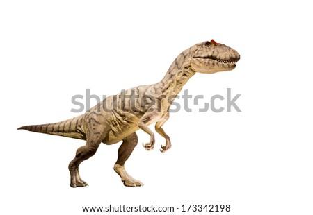 Restoration of an Allosaurus (Allosaurus fragilis) dinosaur isolated. - stock photo