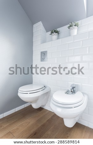 Restroom with wooden floor with toilet and bidet