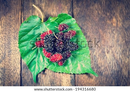 Retro Berry Fruit - stock photo