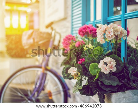 Retro bike on the background of classic facade. Flowers on the background of the stone walls