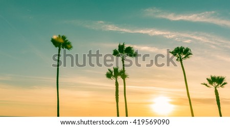 Retro effect image sun setting on horizon through tropical palms along Californian beaches.