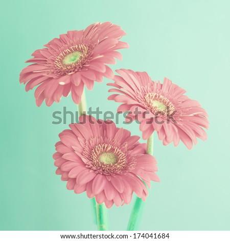 Retro Flowers - stock photo