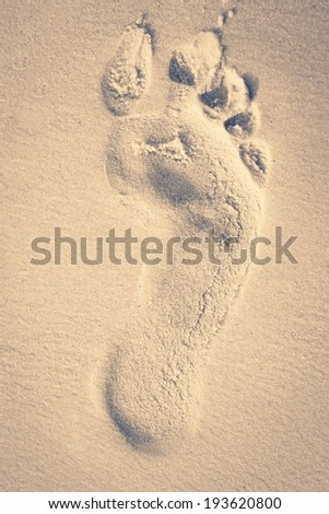 Retro footprint in sand on the beach
